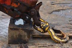 Βαρύς βραχίονας γερανών που καλύπτεται με το πετρέλαιο Στοκ Φωτογραφία