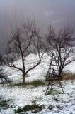 βαρύς χειμώνας ομίχλης Στοκ φωτογραφίες με δικαίωμα ελεύθερης χρήσης