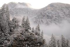 βαρύς χειμώνας στοκ φωτογραφίες με δικαίωμα ελεύθερης χρήσης