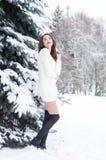 Βασίλισσα χιονιού Πορτρέτο μιας χειμερινής γυναίκας Στοκ φωτογραφίες με δικαίωμα ελεύθερης χρήσης