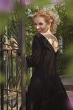 Βασίλισσα σε ένα μαύρο φόρεμα στοκ εικόνες με δικαίωμα ελεύθερης χρήσης