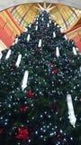 Βασίλισσα Victoria Building, Σίδνεϊ Χριστουγέννων @ Στοκ εικόνα με δικαίωμα ελεύθερης χρήσης