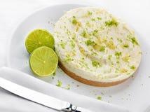 βασική πίτα ασβεστών ασβέσ&t Στοκ εικόνα με δικαίωμα ελεύθερης χρήσης