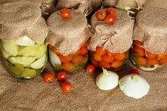 βασικός φυτικός χειμώνας κονσερβοποίησης halophyte Παστωμένες τράπεζες ντομάτες Στοκ Φωτογραφία