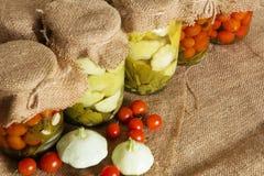 βασικός φυτικός χειμώνας κονσερβοποίησης halophyte Παστωμένες τράπεζες ντομάτες Στοκ εικόνες με δικαίωμα ελεύθερης χρήσης