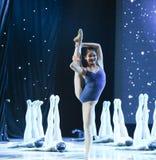 Βασικό εκπαιδευτικό μάθημα χορού Στοκ Εικόνα