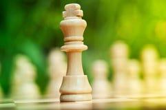 Βασιλιάς του σκακιού στοκ εικόνα