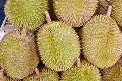 Βασιλιάς Durian στοκ εικόνα