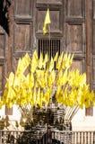 Βασιλικές σημαίες, Chiang Mai Στοκ Εικόνα