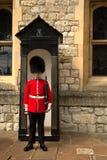 Βασιλική φρουρά στον πύργο του Λονδίνου Στοκ Φωτογραφίες