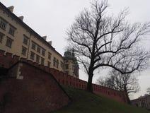 Βασιλικό κάστρο Wawel στην Κρακοβία, Πολωνία στοκ εικόνα