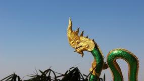 Βασιλιάς χρυσού κεφαλιού schale naga του πράσινου Στοκ Εικόνες