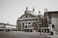 βασιλική Πάδοβα Άγιος το μαύρο λευκό Στοκ Εικόνα