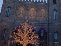 Βασιλική της Notre Dame, παλαιά πόλη Μόντρεαλ, Κεμπέκ Στοκ Εικόνες