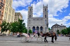 Βασιλική της Notre-Dame Στοκ φωτογραφία με δικαίωμα ελεύθερης χρήσης