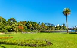 Βασιλικός βοτανικός κήπος του Σίδνεϊ - της Αυστραλίας, Νότια Νέα Ουαλία Στοκ εικόνα με δικαίωμα ελεύθερης χρήσης