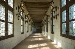 Βασιλικός Chateau de Chambord στοκ φωτογραφία με δικαίωμα ελεύθερης χρήσης