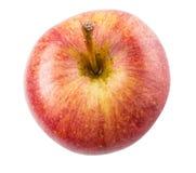 Βασιλικό Gala Apple IV Στοκ Εικόνες