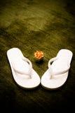 βατραχοπέδιλα στοκ φωτογραφία με δικαίωμα ελεύθερης χρήσης