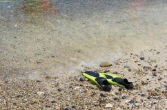 βατραχοπέδιλα ή κολυμπώντας πτερύγια στοκ φωτογραφίες