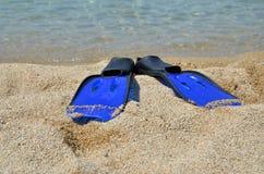 Βατραχοπέδιλα στην παραλία χαλικιών στοκ εικόνα