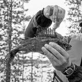 Βατραχοπέδιλο ψαριών στοκ φωτογραφίες με δικαίωμα ελεύθερης χρήσης