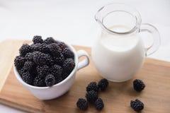 Βατόμουρα και γάλα Στοκ Εικόνα