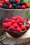 Βατόμουρα, φράουλα, και σμέουρο Στοκ Εικόνες