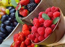 Βατόμουρα, φράουλα, σμέουρο και σταφύλια σε ένα ξύλινο baske Στοκ φωτογραφία με δικαίωμα ελεύθερης χρήσης