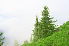 βαυαρική προσοχή πύργων θέας του Μόναχου βουνών τοπίων οριζόντων πόλεων ebersberg μακριά όχι Στοκ Φωτογραφίες