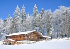 βαυαρικό δάσος wintertime Στοκ Φωτογραφία