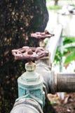 Βαλβίδα νερού στον κήπο Στοκ Φωτογραφία