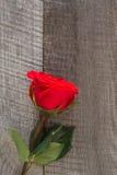 βαλεντίνος καρτών s Κόκκινα τριαντάφυλλα στην ξύλινη επιτραπέζια κινηματογράφηση σε πρώτο πλάνο Τοπ όψη Στοκ Φωτογραφία