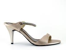 βαλμένο τακούνια υψηλό παπούτσι Στοκ Εικόνες