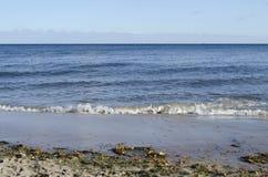 βαλτική Εσθονία κοντά στη θάλασσα somethere Ταλίν Στοκ Εικόνα