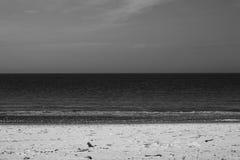 βαλτική Εσθονία κοντά στη θάλασσα somethere Ταλίν Στοκ Φωτογραφία