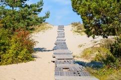 βαλτικός οβελός θάλασσας ακτών curonian Στοκ εικόνα με δικαίωμα ελεύθερης χρήσης