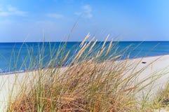 βαλτικός οβελός θάλασσας ακτών curonian Στοκ Εικόνα