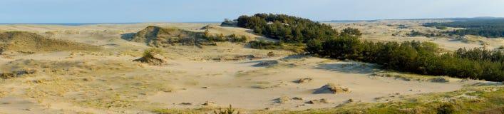 βαλτικός οβελός θάλασσας ακτών curonian Στοκ εικόνες με δικαίωμα ελεύθερης χρήσης