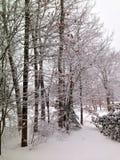 βαλτικός χειμώνας θύελλας της Ρωσίας αποβαθρών zelenogradsk Στοκ Φωτογραφίες