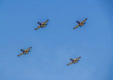Βαλτικό αεροπλάνο μελισσών Στοκ φωτογραφίες με δικαίωμα ελεύθερης χρήσης