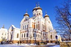 βαλτικό τεμάχιο nevsky Ταλίν χωρών καθεδρικών ναών του Αλεξάνδρου χειμώνας όψης δέντρων χιονιού έλατου κλάδων Στοκ εικόνα με δικαίωμα ελεύθερης χρήσης