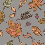 βγάζει φύλλα διανυσματική απεικόνιση