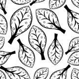 Βγάζει φύλλα το Μαύρο σχεδίων Στοκ εικόνα με δικαίωμα ελεύθερης χρήσης