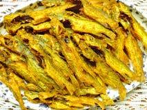 Βεγγαλική κουζίνα - τσιγαρισμένα ψάρια Tengra ή τηγανητά γατόψαρων Στοκ Εικόνες