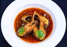 Βεγγαλικό κάρρυ ψαριών στοκ εικόνες