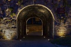 Βελιγράδι Σερβία Kalemegdan τη νύχτα στοκ φωτογραφίες με δικαίωμα ελεύθερης χρήσης