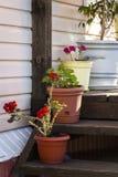 Βεράντα ενός ιδιωτικού σπιτιού στοκ εικόνα με δικαίωμα ελεύθερης χρήσης