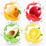 Βερίκοκο, λεμόνι, ρόδι, χυμός αβοκάντο Φρούτα στο ρεαλιστικό διανυσματικό σύνολο παφλασμών ελεύθερη απεικόνιση δικαιώματος