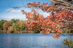 Βερμόντ το φθινόπωρο Στοκ Εικόνες